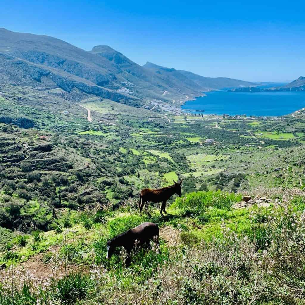Hiking trails Amorgos island